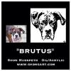 """BRUTUS"" ~ WITH PHOTO REFERENCE"